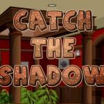 Catch The Shadow