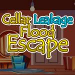 Cellar Leakage Flood Escape